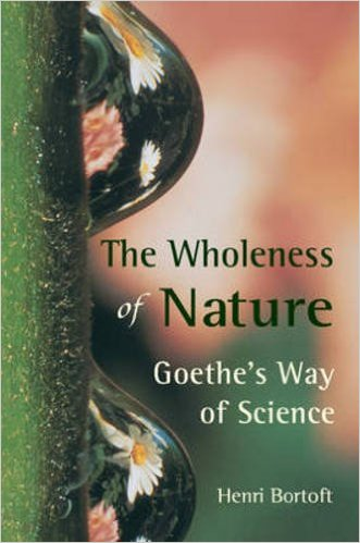 The-wholeness-of-nature
